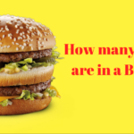 how many calories are in a Big Mac