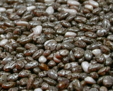 chia seed nutrition facts