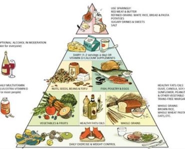 Nutrition Guide