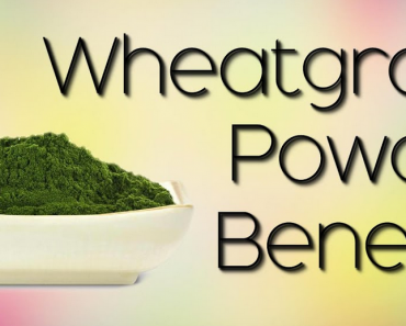 Wheatgrass Powder Benefits