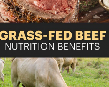 grass fed beef benefits