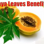 benefits of papaya leaf