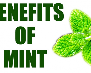 Peppermint Leaf Benefits