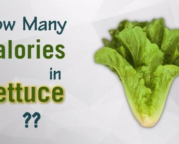 How Many Calories in Lettuce